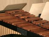 haus_der_musik_2007_015
